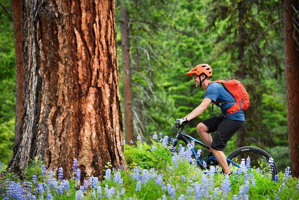 Best Mountain Bike Brands (Trek)