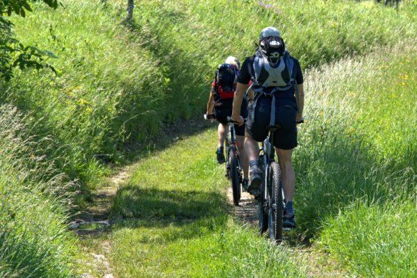 cyclists-1445700_1920