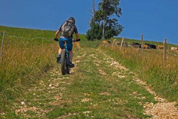 mountain-bike-3555256_1920